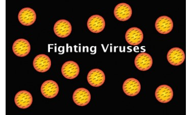 The Best Way To Prepare To Fight Any Virus